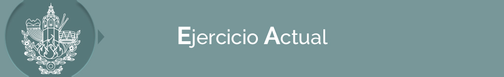 títulos EJERCICIO ACTUAL